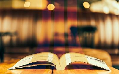 Bild von Everything | shutterstock.com