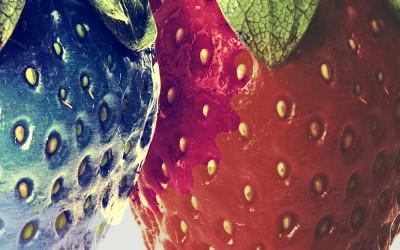 Bild von jpegwiz | shutterstock.com
